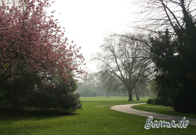Japanischer Garten Leverkusen In Leverkusen Beoma